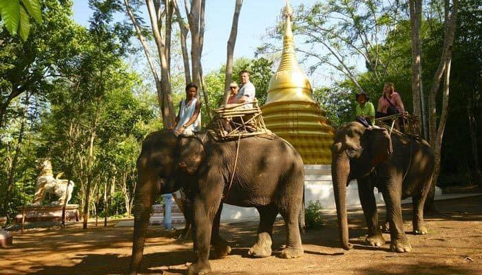Elephant World Kanchanaburi Thailand