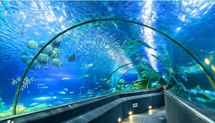 National Oceanographic Museum of Nha Trang Vietnam