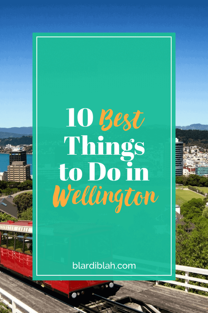 10 Best Things to Do in Wellington