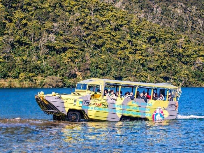 Ride a Rotorua Duck